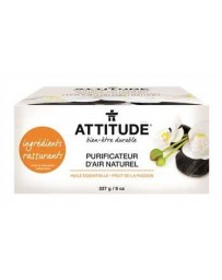 ATTITUDE purificateur d'air avec ingrédients rassurants - fruits de la passion - 6-8 semaines