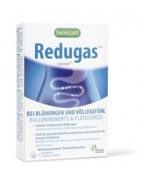 BENEGAST Redugas™ 20 comprimés à mâcher